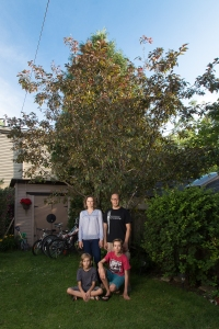 Serviceberry Tree